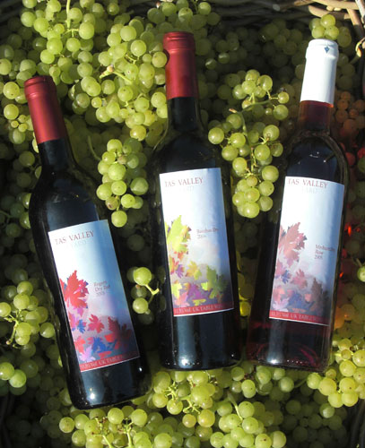 Selection of Tas Valley Wines